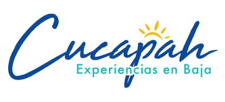 Tours y Experiencias en Baja California